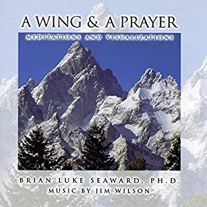 A Wing and a Prayer: Meditations and Visualizations Audiobook