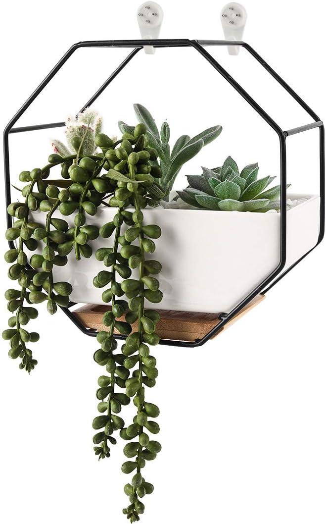 Superbpag Wall Planters White Ceramic Hanging Succulent Planter Pot with Drainage Hole, Air Plants Mini Cactus Live Artificial Cactus Flower Pot DesktopContainer for Home Office Decor, Black