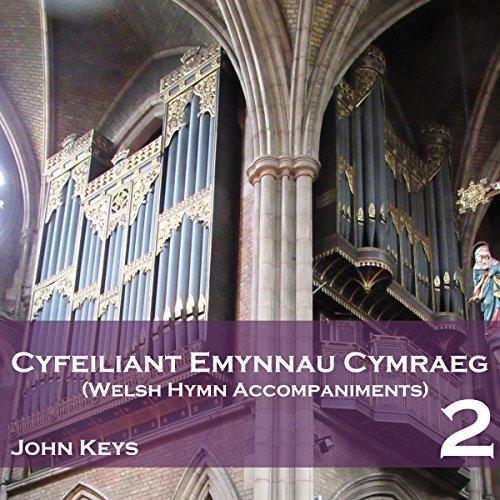 Pan Fo'n Blynyddoedd Ni'n Byrhau (Ombersley) (Instrumental Version) (Nin Instrumental)