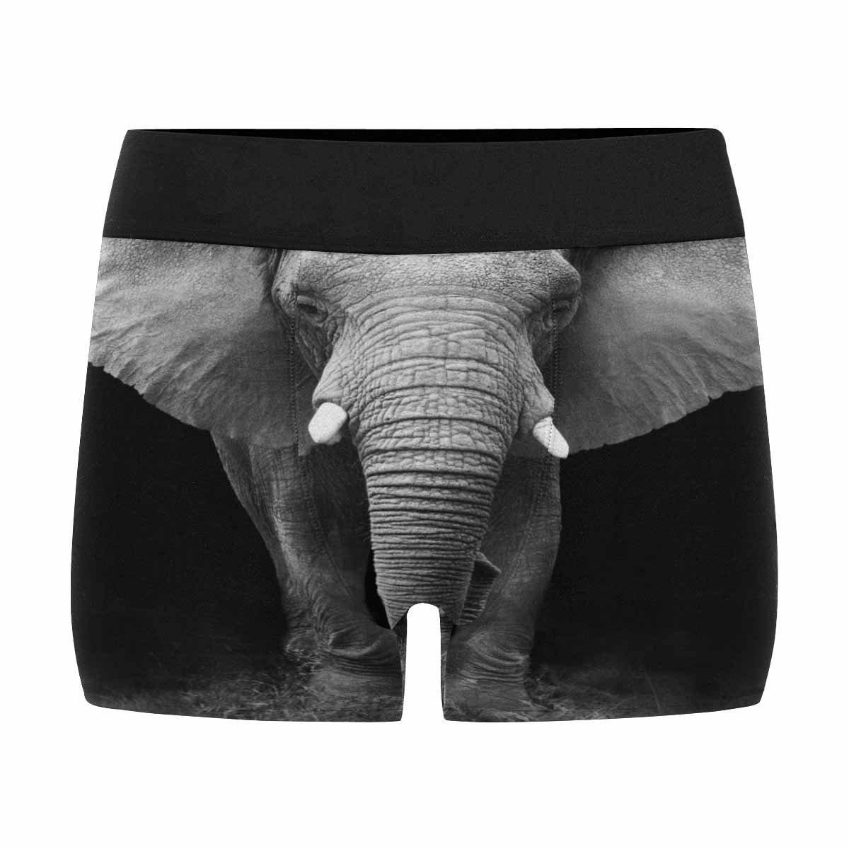INTERESTPRINT Boxer Briefs Mens Underwear Elephant XS-3XL