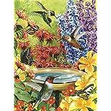 Cobble Hill Hummingbird Garden, 500-Piece
