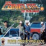 Los Canelos De Durango (Puros Corridos Gruesos Km-493)