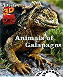 Animals of Galapagos - Classic ViewMaster - 2 Reel
