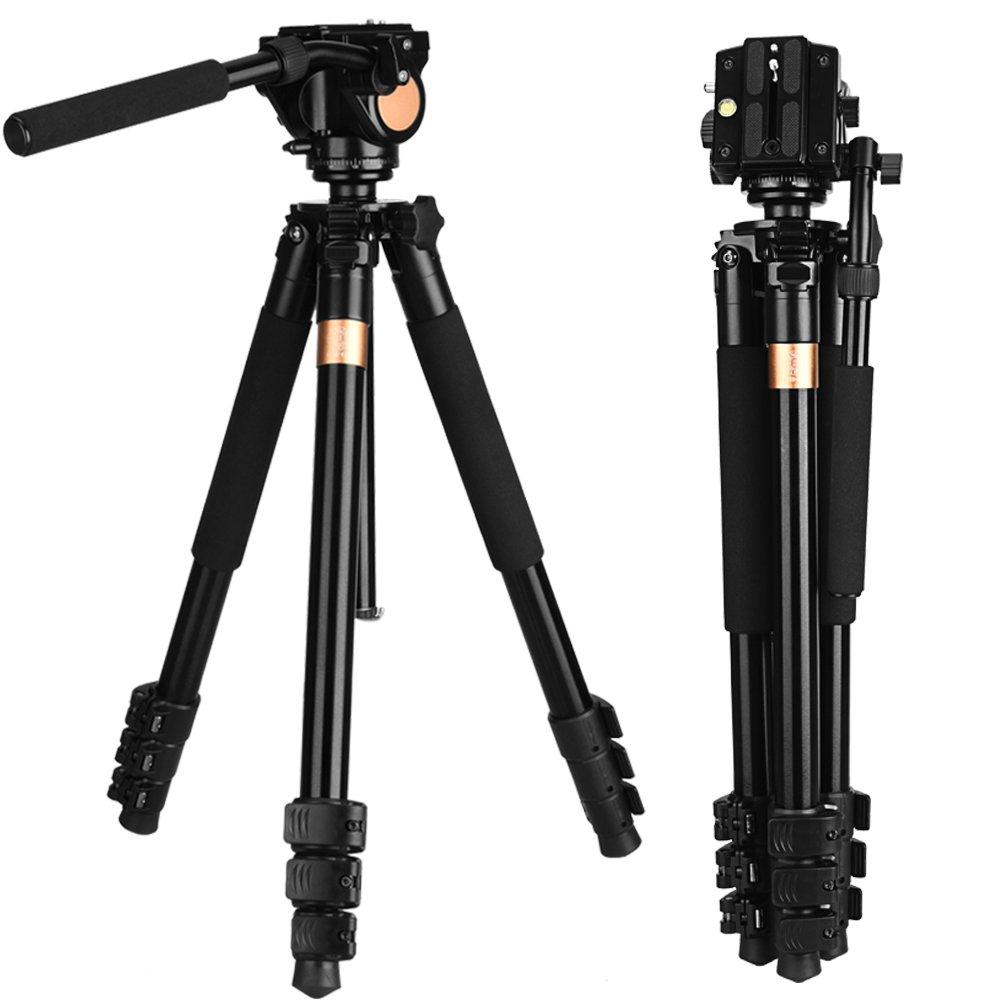 q640 70インチ20 kg Big LOAC容量カメラ三脚の望遠鏡特別なデザインのヘッド1 /4スレッドデジタル三脚キットfor Nikon   B07BQ2MDLV