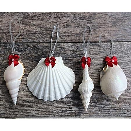 61kg86eF5OL._SS450_ Seashell Christmas Ornaments
