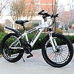 "61kgJLBsjLL. SS150 Lombardo Mountain Bike 20"" Brera 20 6 V Orange/Black"