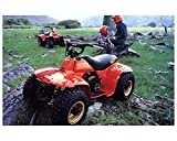 1984 Suzuki LT50 Quadrunner ATV Factory Photo