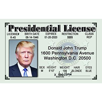 Fun Donald com Home Driver's Signs Kitchen Amazon amp; 4 Trump's License Npid45