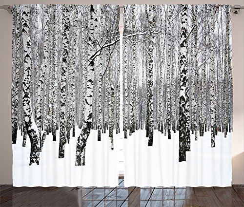 """Ambesonne Winter Curtains, Winter Birch Grove in The Forest with Leafless Tree Branches Scenic Nature Image, Living Room Bedroom Window Drapes 2 Panel Set, 108"""" X 84"""", Charcoal White"""