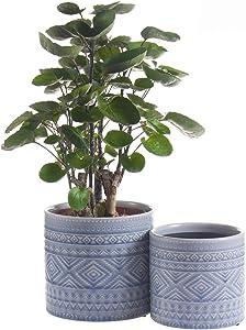 Voeveca Ceramic Flower Pot Garden Planters 4.5
