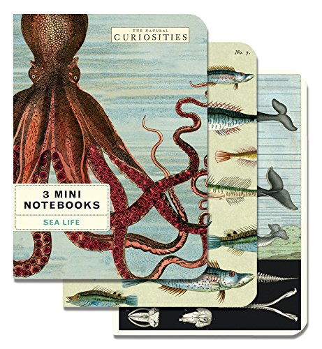 Cavallini Papers & Co., Inc. Sea Life Mini Notebooks 4 x 5.5