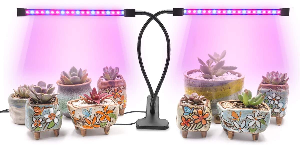 2019 Upgraded 20W Dual Head Automatic Cycle-Timing Grow Light Growing Lamp, 3 Adjustable Color Modes, 5 Dimmable Levels, 40 LED Chips with Red Blue Spectrum Grow Light for Indoor Plants AMAZINGCATS