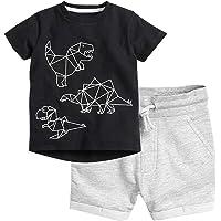 Zrom Baby Boys Clothing Set,1-7 Years Toddler Kids Baby Boys Fashion Dinosaur Printed T-shirt Tops Shorts Outfits Set