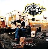 White Trash Beautiful (Album Version): more info