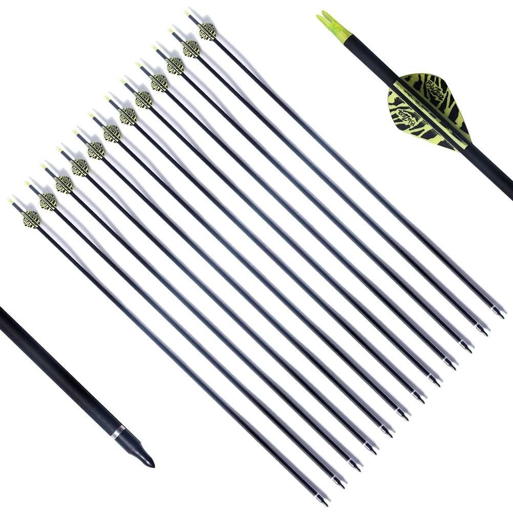 PG1ARCHERY Archery Target Carbon Arrows, 30 inch Practice Arrow 2'' Fletched Vanes with Removable Field Points Tips for Hunting (Pack of 12) Green