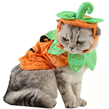 Bolbove Pet Pumpkin Costume for Cats \u0026 Small Dogs Party Halloween Cosplay  Free Size Orange
