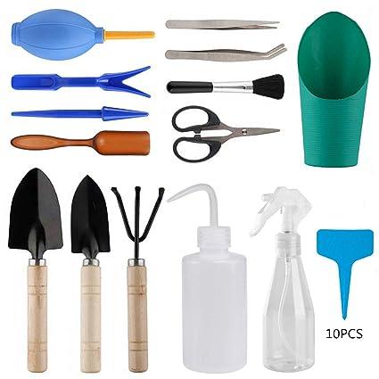 Amazon.com: PiXiu-XP - Juego de 24 herramientas suculentas ...
