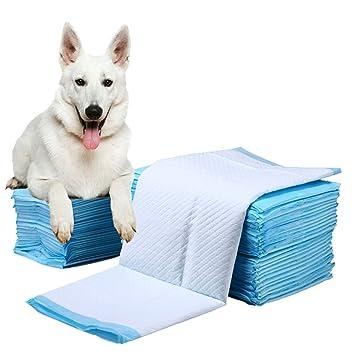 shanzhizui Pañales para mascotas Almohadilla para perros Espesar Desodorización Golden Retriever Perros grandes (M)