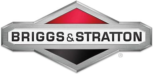 Briggs Stratton 591025 Fuel Tank Assembly Genuine Original Equipment Manufacturer OEM Part