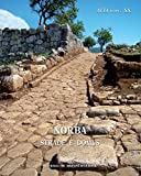 img - for Norba: Strade e Domus (Atlante Tematico Di Topografia Antica. Supplementi) (Italian Edition) book / textbook / text book