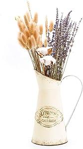 YoleShy Farmhouse Decorative Pitcher, Metal Rustic Pitcher Vase Flower Jug for Home Decoration, Wedding Decor, Photo Props (White)