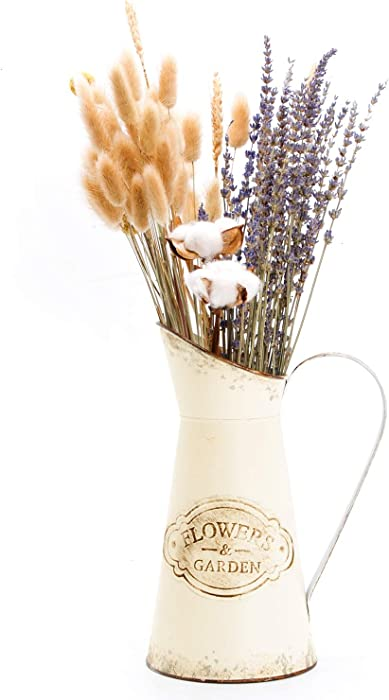 YoleShy Farmhouse Decorative Pitcher, Metal Rustic Pitcher Vase Flower Jug for Home Decoration, Wedding Decor, Photo Props (White)