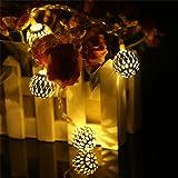 AtneP 20 LED Metal String Lights(Warm White)