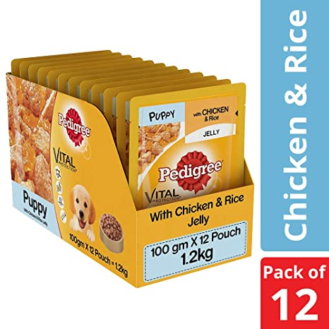 Buy Pedigree Puppy Wet Dog Food Chicken And Rice 100 G Pack Of 12