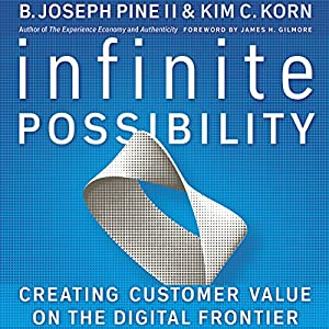 Infinite Possibility: Creating Customer Value on the Digital Frontier Audiobook