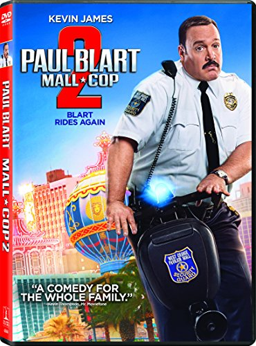 Paul Blart: Mall Cop 2 - The Mall Dayton