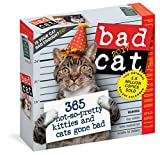 Bad Cat Page-A-Day Calendar 2017 by