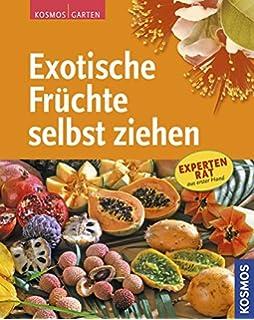 Zitrone, Orange, Kumquat & Co.: Die Schönsten Zitruspflanzen Und ... Richtige Pflege Von Zitruspflanzen