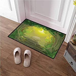 TableCovers&Home Door Mat Inside Forest Runner Rug Magical Pathway with Trees and Ferns Fantastic Ancient Fairytale for Kitchen Floor Laundry Living Room Sage Yellow and Fern Green 16x24 inches