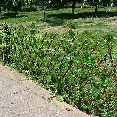 cineman Valla Artificial para Plantas de jardín, Uso en Interiores al Aire Libre, Valla de jardín, protección UV, Pantalla de privacidad, decoración del hogar, Paredes de Verduras: Amazon.es: Hogar