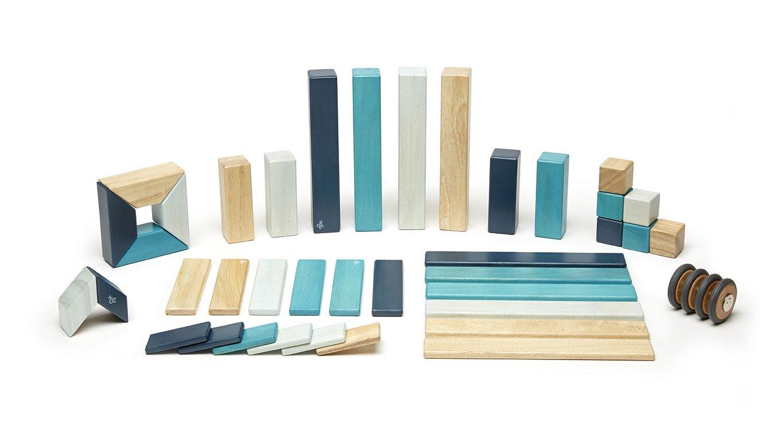 Amazon.com: Tegu 42 Piece Magnetic Wooden Block Set, Blues: Toys & Games