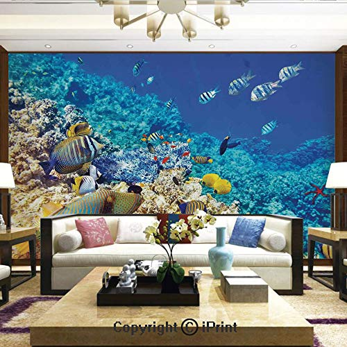 Lionpapa_mural Wall Mural Showing All They Beauty Extremely Detailed Image, Clear Sea Animal World Corals Tropical Fishes and Starfish Egyptian Sea Image,Home Decor - 66x96 inches