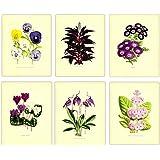 "Vintage Botanical Prints Wall Art, 8""x10"" Set of Six, Unframed Floral Art Print - Stunning Flower Decor for Kitchen, Bedroom, Office, Bathroom, Home"