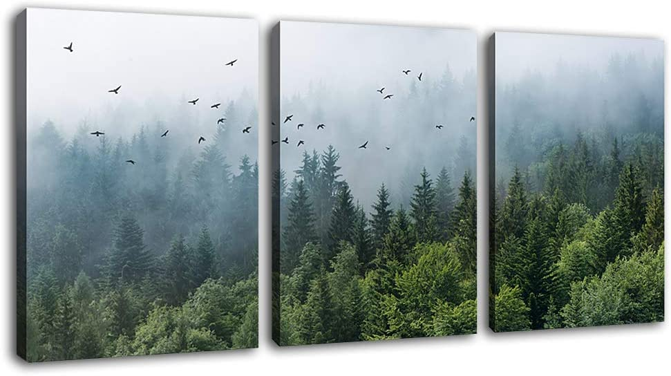 """Green Forest Wall Art Tropical Virgin Forest Mountain Bird Contemporary Canvas Pictures Modern Artwork Framed for Bathroom Bedroom Nursery Living Room Home Office Kitchen Wall Decor 12"""" x 16"""" 3 Pieces"""