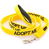 ADOPT ME Dexil Friendly Dog Collars Color Coded Dog Accident Prevention Leash 6ft/1.8m Prevents Dog Accidents By Letting Others Know Your Dog In Advance Award Winning