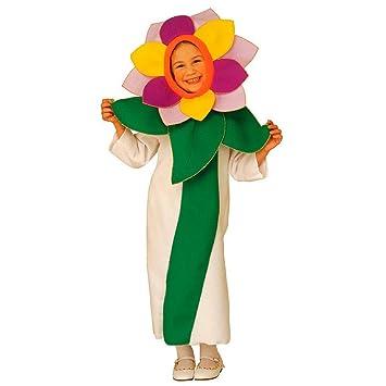 NET TOYS Disfraz de Flor Infantil Traje Carnaval niño niña ...