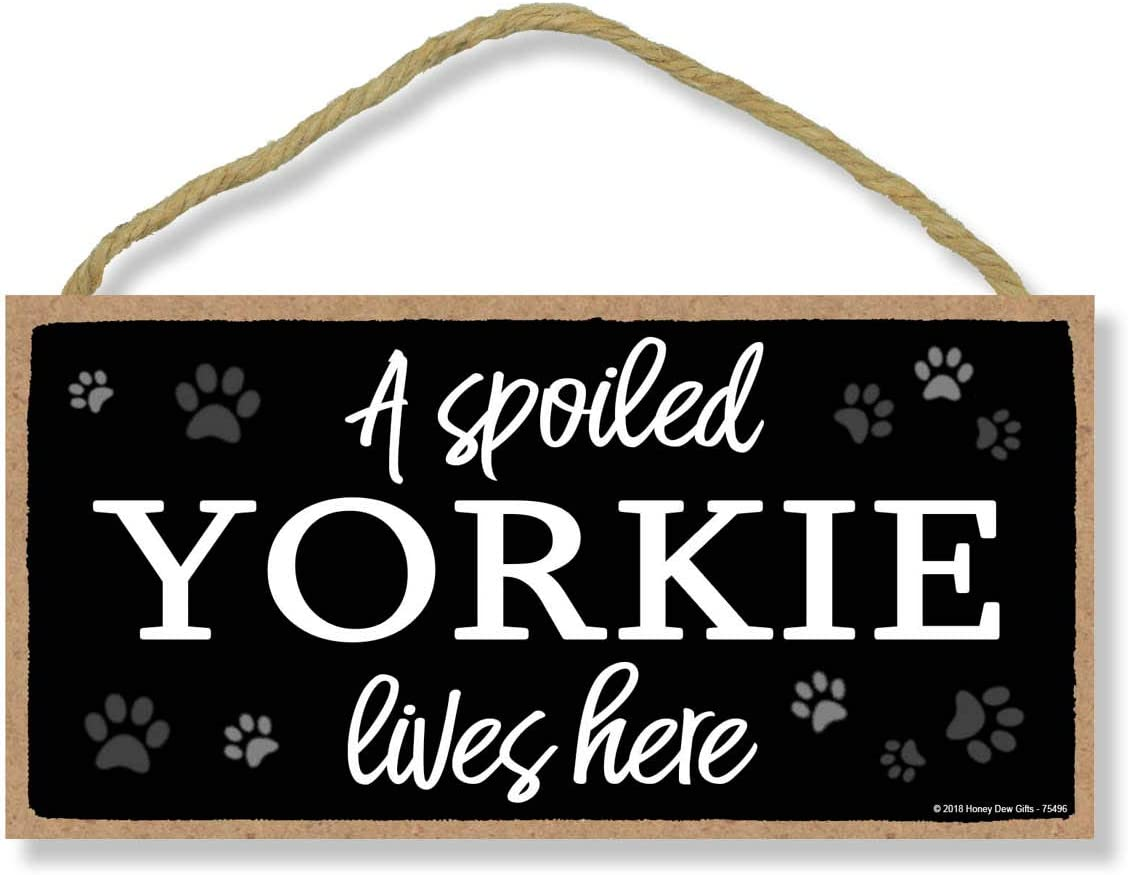 Honey Dew Gifts A Spoiled Yorkie Lives Here 5 inch by 10 inch Hanging Yorkie Decor, Wall Art, Decorative Wood Sign Home Decor, Yorkie Gifts