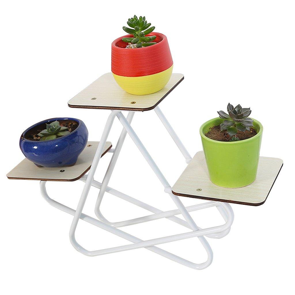 CSQ Pentagram Desktop Plant Stand/Flower Stand, Iron Art Board Creative Design, Study Bedroom, 382512CM