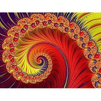 Doppelganger33LTD PHOTO FRACTAL ART FLOWER ART LARGE WALL ART PRINT POSTER PICTURE LF2453