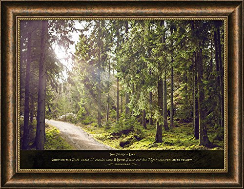 Carpentree 36'' x 38'' x 0.5'' Show Me the Path Framed Art x by Carpentree