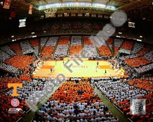 Thompson Bolling Arena - Univer. of Tennessee Sports Photo (10 x 8)