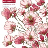 The Eden Project 2018 12 x 12 Inch Monthly Square Wall Calendar by Flame Tree, Fine Art Illustration