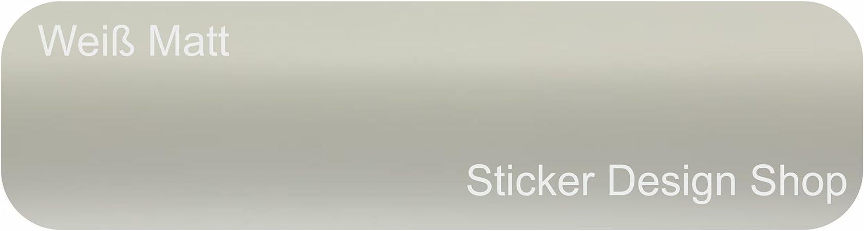 ORACAL 631 5 m x 31,5 cm blanco mate 010 pantalla para plotter Manualidades – Lámina para muebles pantalla: Amazon.es: Coche y moto