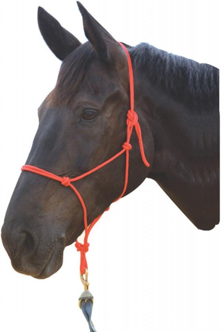 Roma Nylon Rope Headcollar