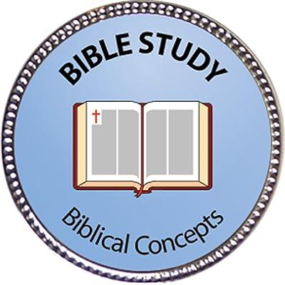 Keepsake Awards Bible Study - Biblical Concepts Award, 1 inch Dia Silver Pin Spiritual Life Skills Collection: Toys & Games