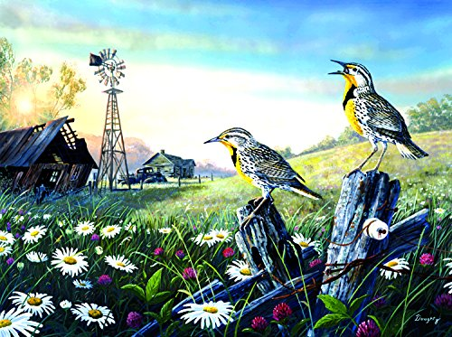 SunsOut Meadow Outpost 1000 Piece Jigsaw Puzzle